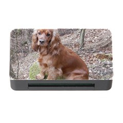 Red Full Cocker Spaniel Memory Card Reader With Cf