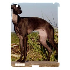 Italian Greyhound Full Apple Ipad 3/4 Hardshell Case (compatible With Smart Cover)