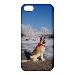 Akita In Snow Apple Iphone 5c Hardshell Case