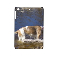 Akita In Water Ipad Mini 2 Hardshell Cases