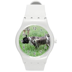Akita Pointing Round Plastic Sport Watch (m)