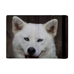 Akita Inu 6 Ipad Mini 2 Flip Cases