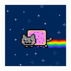 Nyan Cat Medium Glasses Cloth