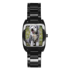 Bearded Collie Sitting Stainless Steel Barrel Watch