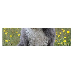 Bearded Collie Sitting Satin Scarf (oblong)