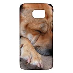 Shar Pei Sleeping Galaxy S6
