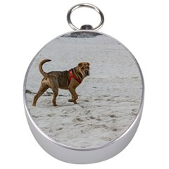 Shar Pei On Beach Silver Compasses