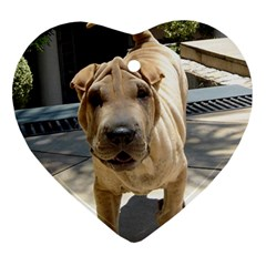 Shar Pei 3 Heart Ornament (two Sides)