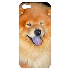 Chow Chow Apple Iphone 5 Hardshell Case