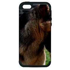 German Shepherd With Toy Apple Iphone 5 Hardshell Case (pc+silicone)