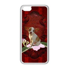 Sweet Little Chihuahua Apple Iphone 5c Seamless Case (white)