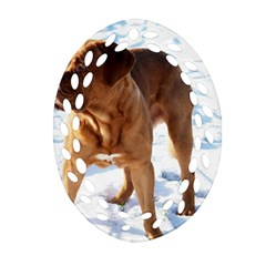 Dogue De Bordeaux In Snow Oval Filigree Ornament (two Sides)