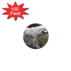 Great Pyrenees Full 1  Mini Magnets (100 Pack)