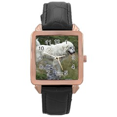 Great Pyrenees Full Rose Gold Leather Watch