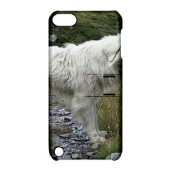 Great Pyrenees Full Apple Ipod Touch 5 Hardshell Case With Stand