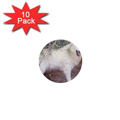 Great Pyrenees In Forest 1  Mini Buttons (10 Pack)