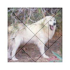 Great Pyrenees In Forest Acrylic Tangram Puzzle (6  X 6 )