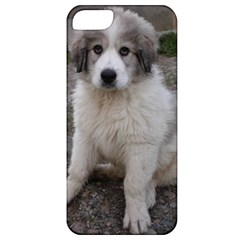 Great Pyrenees Puppy Apple Iphone 5 Classic Hardshell Case