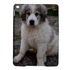 Great Pyrenees Puppy Ipad Air 2 Hardshell Cases