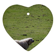 Great Pyrenees Working Ornament (heart)