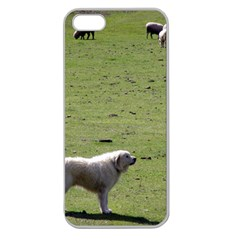Great Pyrenees Working Apple Seamless Iphone 5 Case (clear)