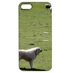 Great Pyrenees Working Apple Iphone 5 Hardshell Case With Stand