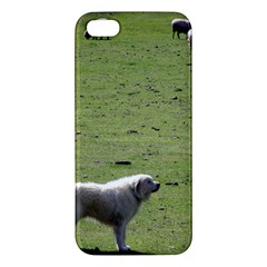 Great Pyrenees Working Iphone 5s/ Se Premium Hardshell Case