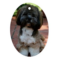 Lhasa Apso Shaved Ornament (oval)