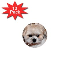 Lhasa Apso Groomed 1  Mini Buttons (10 Pack)