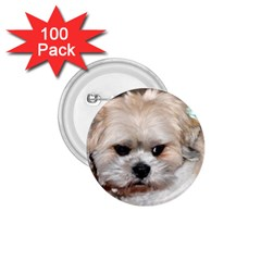 Lhasa Apso Groomed 1 75  Buttons (100 Pack)