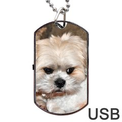 Lhasa Apso Groomed Dog Tag Usb Flash (one Side)