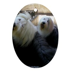 2 Old English Sheepdogs Ornament (oval)