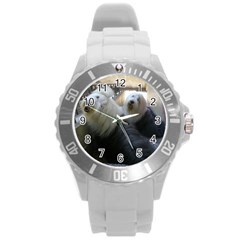 2 Old English Sheepdogs Round Plastic Sport Watch (l)