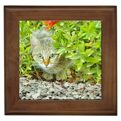 Hidden Domestic Cat With Alert Expression Framed Tiles