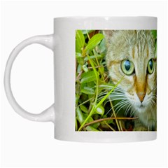 Hidden Domestic Cat With Alert Expression White Mugs