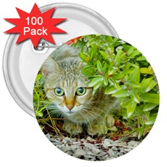 Hidden Domestic Cat With Alert Expression 3  Buttons (100 Pack)