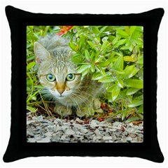 Hidden Domestic Cat With Alert Expression Throw Pillow Case (black)