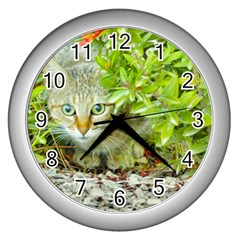 Hidden Domestic Cat With Alert Expression Wall Clocks (silver)