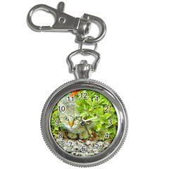 Hidden Domestic Cat With Alert Expression Key Chain Watches
