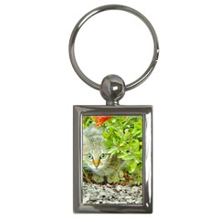 Hidden Domestic Cat With Alert Expression Key Chains (rectangle)