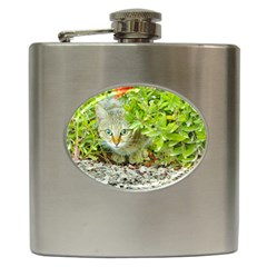 Hidden Domestic Cat With Alert Expression Hip Flask (6 Oz)