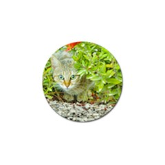Hidden Domestic Cat With Alert Expression Golf Ball Marker (10 Pack)