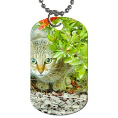 Hidden Domestic Cat With Alert Expression Dog Tag (two Sides)
