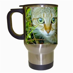 Hidden Domestic Cat With Alert Expression Travel Mugs (white)