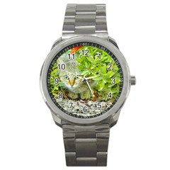 Hidden Domestic Cat With Alert Expression Sport Metal Watch