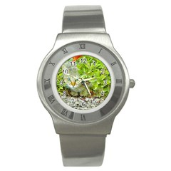 Hidden Domestic Cat With Alert Expression Stainless Steel Watch