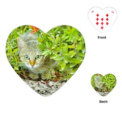 Hidden Domestic Cat With Alert Expression Playing Cards (heart)