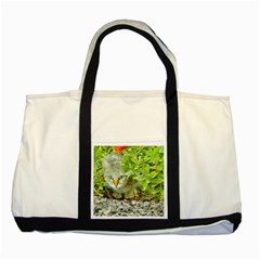 Hidden Domestic Cat With Alert Expression Two Tone Tote Bag