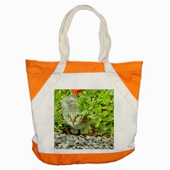 Hidden Domestic Cat With Alert Expression Accent Tote Bag
