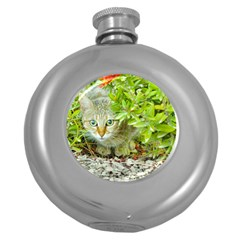Hidden Domestic Cat With Alert Expression Round Hip Flask (5 Oz)